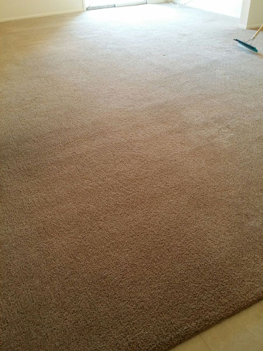 carpet is much cleaner after service