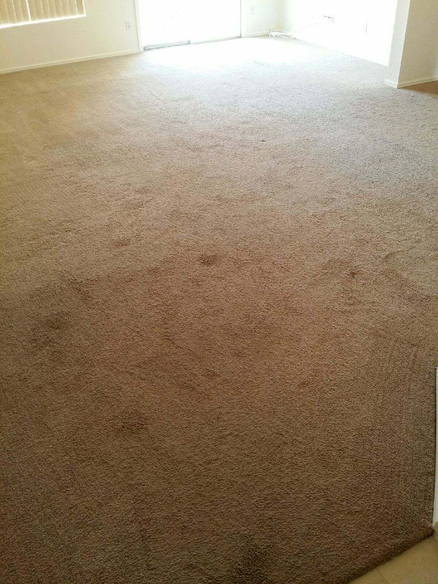 this is before cleaning service, carpet is dirty