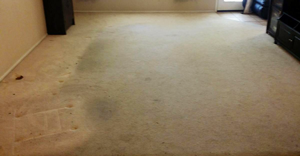 carpet before cleaning is very dirty